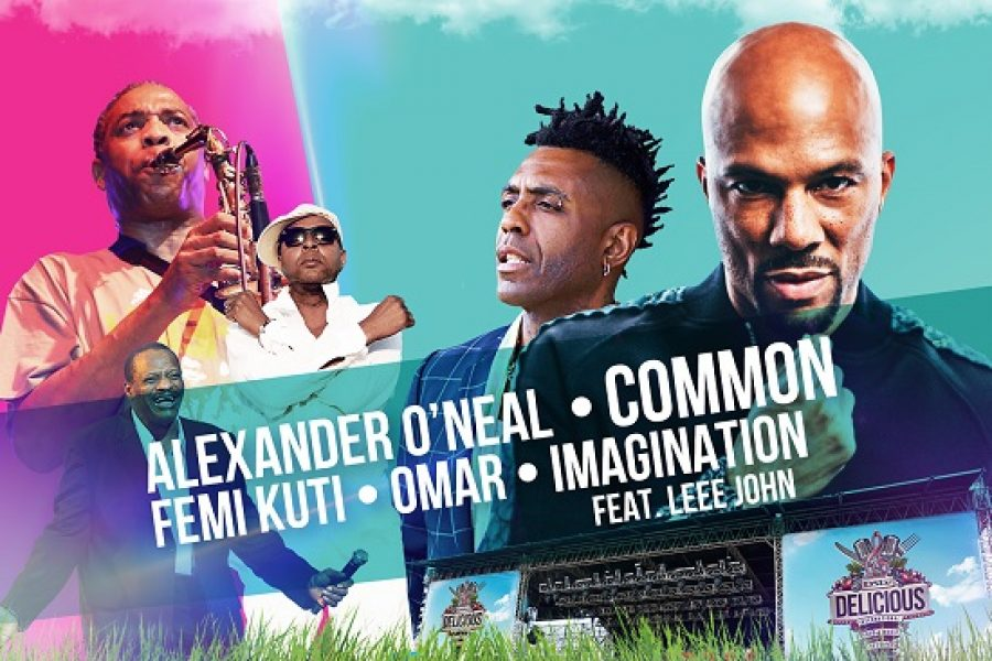 Here is The DSTV Delicious Festival Line-up for 2017!